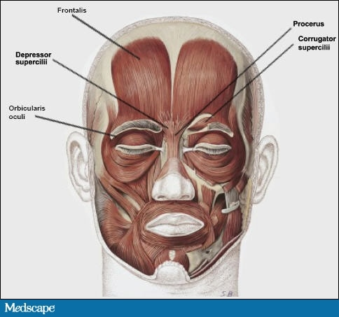 facial rejuvenation of a 58-year-old woman: combination treatment, Human Body