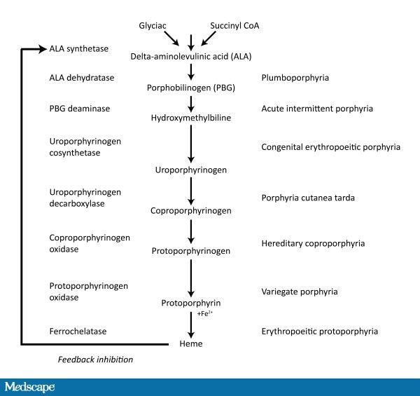 metabolic practical considerations microbial electrosynthesis Essays in biochemistry nov 30  to the production of fuel in a process known as microbial electrosynthesis  metabolic and practical considerations on microbial .