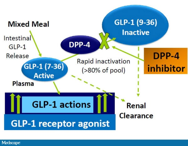Therapy for T2DM: Risks and Benefits With Long-Acting GLP-1 Agonists