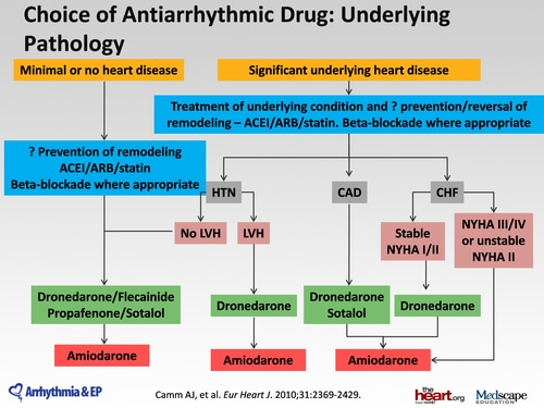 2011 esc guidelines update on antiarrhythmic drugs transcript