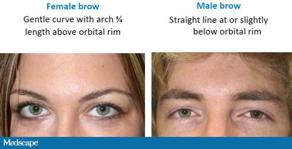 how to use eyebrow shaper. when formulating a strategy for brow shaping, one must keep in mind that the ideal shape women differs markedly from men. how to use eyebrow shaper