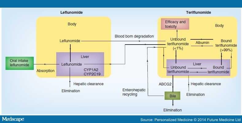 Arava Dosage Rheumatoid Arthritis