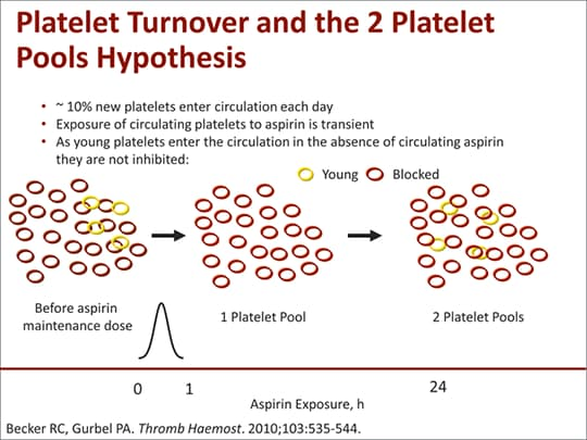 High platelet study group