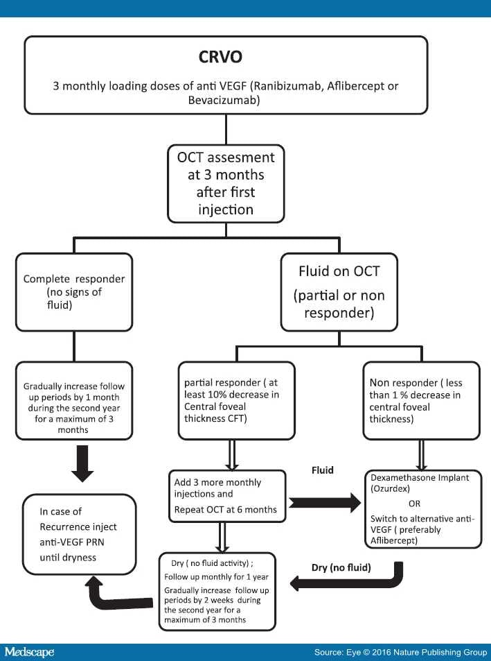 retinal vein occlusion treatment guidelines