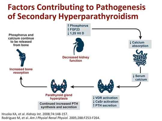secondary hyperparathyroidism in ckd issues and