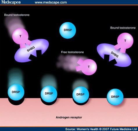 transthyretin sex hormone binding globulin response