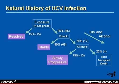 Hiv Hepatitis C Coinfection Natural History And Disease Progression