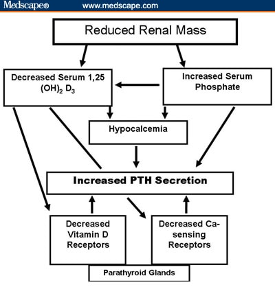 management of secondary hyperparathyroidism in ckd stages