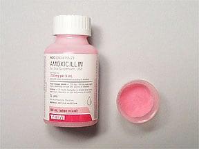 amoxicillin 250 mg/5 mL oral suspension