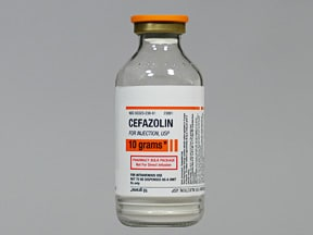 cefazolin 10 gram solution for injection