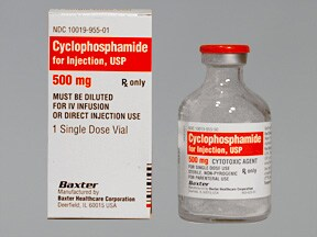 Cyclophosphamide Side Effects In Cats