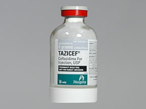 TAZICEF 6 gram solution for injection