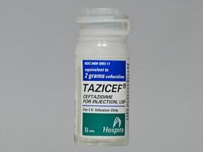 TAZICEF 2 gram intravenous solution