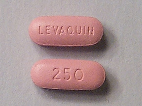 Levaquin 250 mg tablet