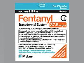 fentanyl 37.5 mcg/hour transdermal patch