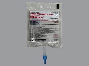 Cleocin 600 mg/50 mL in 5 % dextrose intravenous piggyback
