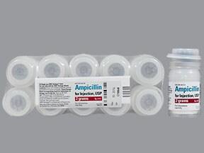 ampicillin 2 gram intravenous solution