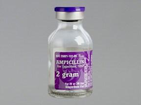 ampicillin 2 gram solution for injection