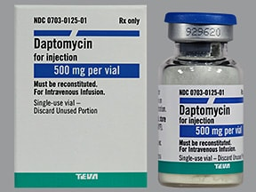 daptomycin 500 mg intravenous solution