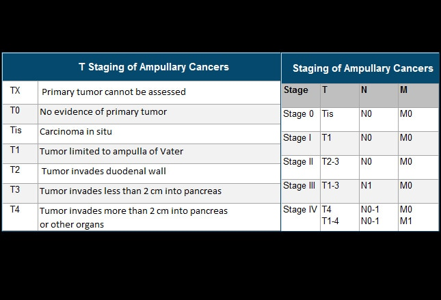 Gallbladder Bile Duct And Ampullary Cancer Shaking The