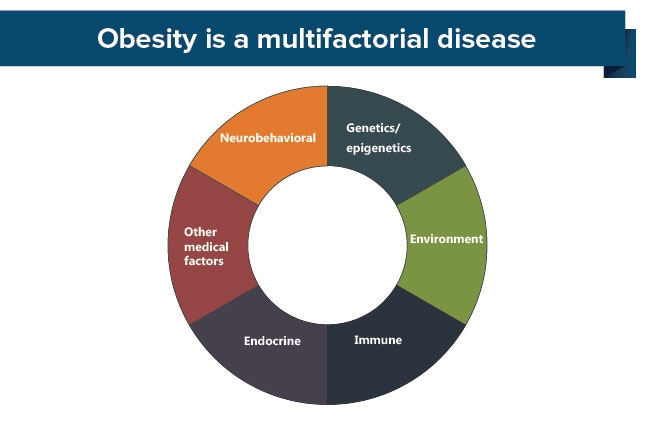 multifactorial causation of obesity
