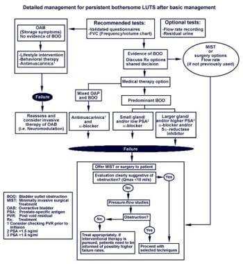 Benign prostatic hyperplasia (BPH) diagnosis and t