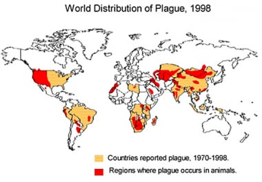 1998 world distribution of plague. Image courtesy