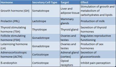 Hormones secreted by adenohypophysis (anterior pit