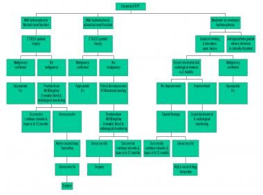 Management algorithm of retroperitoneal fibrosis.