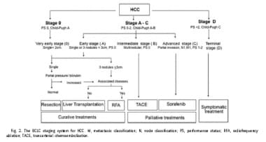 The Barcelona Clinic Liver Cancer (BCLC) staging s