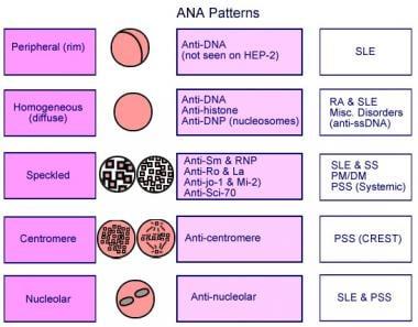 ANA patterns.