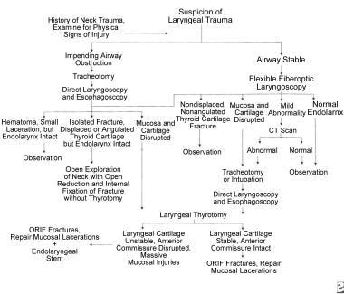 Management protocol for laryngeal trauma.