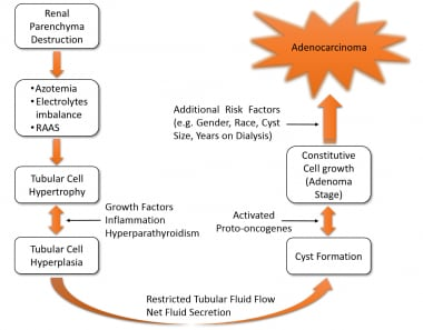 Proposed pathophysiology for cyst formation and ma