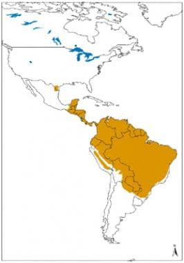 Geographical distribution of cutaneous and mucocut