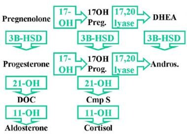 3-beta-hydroxysteroid dehydrogenase (3BHSD) is req