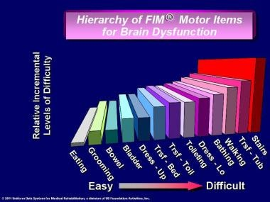 Hierarchy of FIM® instrument motor items for brain