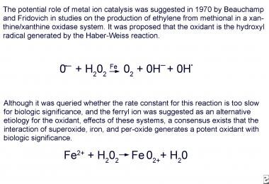 The oxidative potential of iron was first proposed