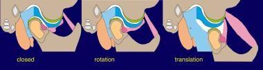 Movement of the temporomandibular joint (TMJ).