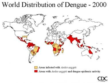 Worldwide distribution of dengue in 2000. Picture