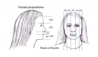 Ideal facial proportions believed to be in aesthet