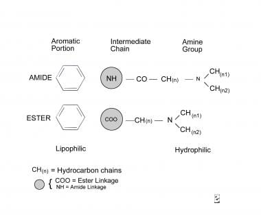 Molecular diagram.
