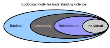 Ecological model for understanding violence.