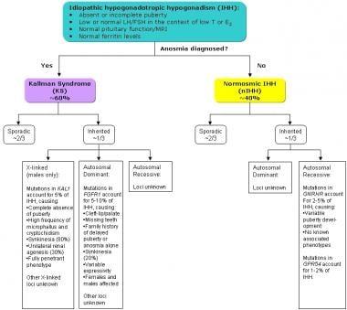 Types of idiopathic hypogonadotropic hypogonadism.