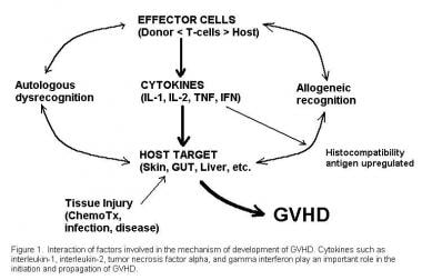 Interactive factors involved in the pathogenesis o