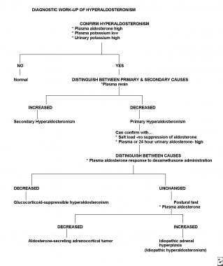 Diagnostic workup of hyperaldosteronism.