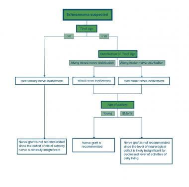 Management algorithm for schwannoma nerve graft.