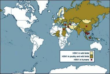 Global map of countries where avian influenza (bir