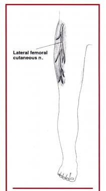 The lateral femoral cutaneous nerve provides senso