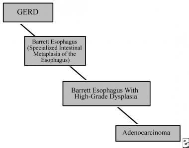 Gastroesophageal reflux disease (GERD)/Barrett eso