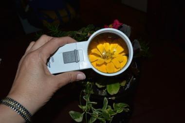 Handheld magnifier.